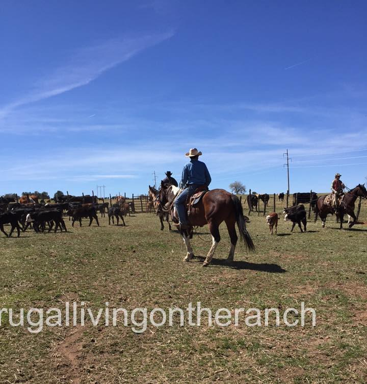 Frugal Living on the Ranch